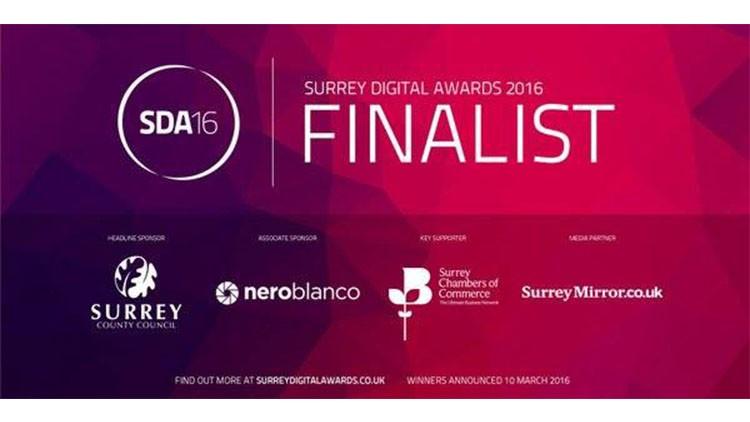 Surrey Digital Awards Finalists Graphic